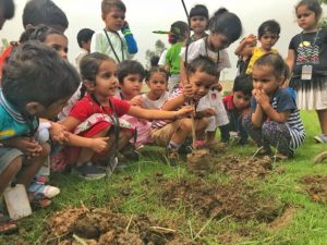 Top 10 Schools in Mohali