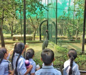 Top 5 Schools in Tricity